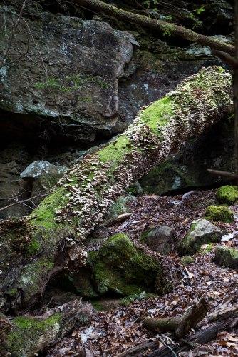Sougahoagdee Falls-11